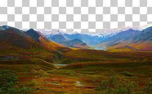 Denali National Park Landscape PNG