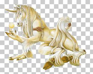Unicorn Legendary Creature Horse Fairy Tale Pegasus PNG
