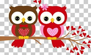 Valentine's Day Gift Owl Paper PNG
