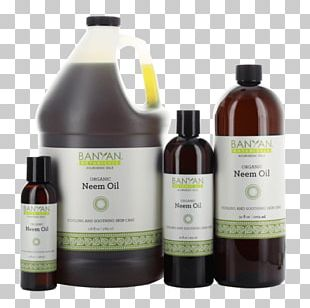 Neem Tree Neem Oil Ayurveda Skin PNG
