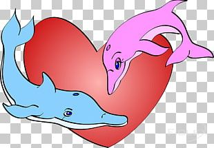 Whales PNG