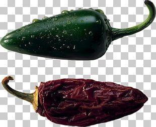 Serrano Pepper Jalapeño Poblano Pasilla Chili Con Carne PNG