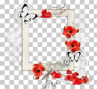 Floral Design Cut Flowers Rose Family Frames PNG