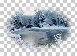 Snow Landscape Blizzard Paysage D'hiver Winter PNG