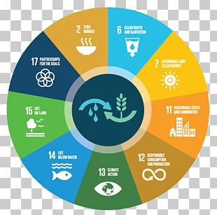 Sustainable Consumption Sustainability Sustainable Development Goals PNG