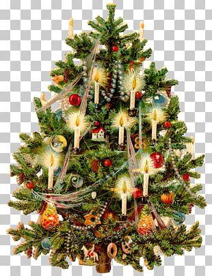 Victorian Era Christmas Tree Christmas Card Christmas Decoration PNG
