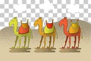 Camel Euclidean Desert Illustration PNG
