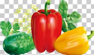 Chili Pepper Red Bell Pepper Vegetable PNG