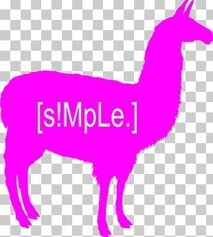 Llama Alpaca Silhouette PNG
