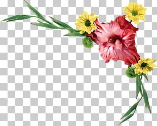 Watercolour Flowers Watercolor Painting Drawing PNG
