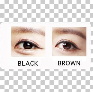 Contact Lenses Bausch & Lomb Eye Circle Contact Lens PNG