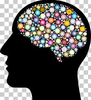 The Female Brain Human Head Skull PNG