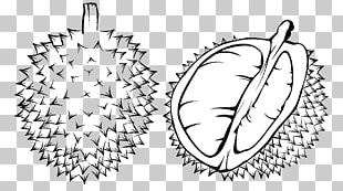 Coloring Book Durian Black And White Child PNG