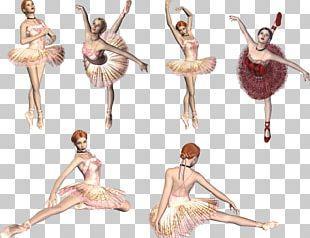 Ballet Dance Long Gallery Homo Sapiens PNG