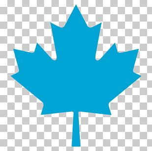 Permanent Residency In Canada Shutterstock Minister Of Foreign Affairs Of Canada Maple Leaf PNG
