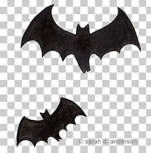 BAT-M PNG