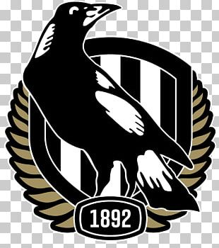Collingwood Football Club Australian Football League Melbourne Cricket Ground Melbourne Football Club Western Bulldogs PNG