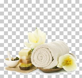 Massage Day Spa Relaxation Therapy PNG