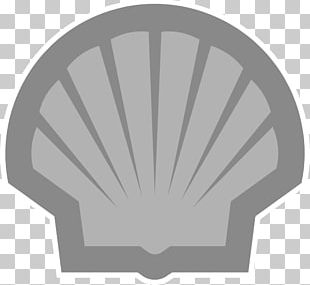 Royal Dutch Shell Petroleum Industry Shell Oil Company Logo PNG