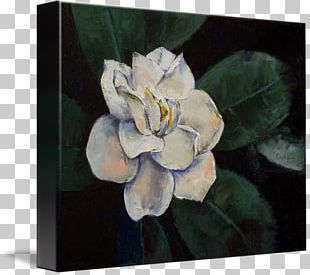 Still Life Canvas Print Oil Painting PNG