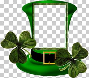 Ireland Saint Patrick's Day Irish People March 17 PNG