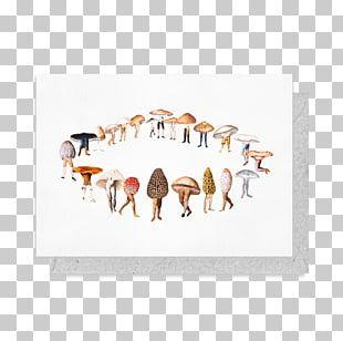 Mushroom Artist Fairy Ring Illustration PNG