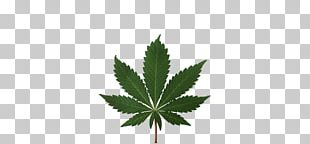 Medical Cannabis Legalization Cannabis Smoking Legality Of Cannabis PNG