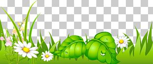 Clipart Computer Wallpaper Lawn PNG