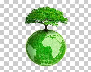 Earth Environmentally Friendly Natural Environment Sustainability PNG