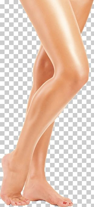 Long Women Legs PNG
