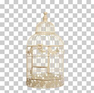 Birdcage Stock Photography Vintage Clothing PNG