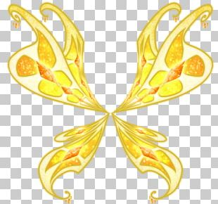 Butterfly Insect Wing Fairy PNG