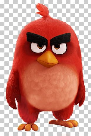 Angry Birds Movie Red Bird PNG