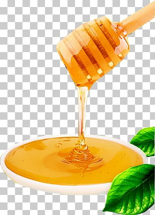Honey Bee Honey Bee Food Candy PNG