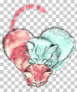Cats Protection Kitten Drawing PNG