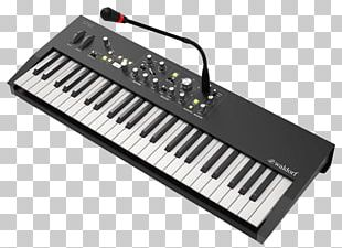 Digital Piano Electric Piano Yamaha DX7 Waldorf Sound Synthesizers PNG