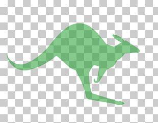 Red Kangaroo Warning Sign Symbol PNG