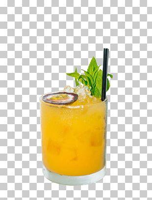 Mai Tai Cocktail Garnish Harvey Wallbanger Fuzzy Navel PNG