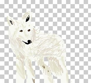Arctic Fox Gray Wolf Hare White PNG