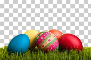 Easter Eggs On Grass PNG