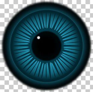 Simple Eye In Invertebrates Iris PNG
