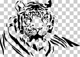 White Tiger Drawing PNG