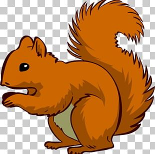 Squirrel Chipmunk Rodent Open PNG