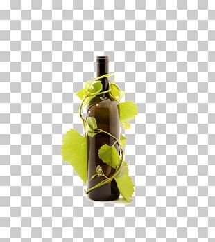 Red Wine Prosecco Beer Common Grape Vine PNG