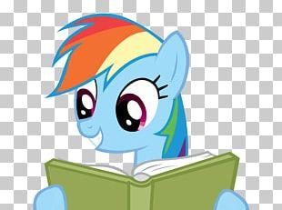 Pony Rainbow Dash The Infamous Ellen James PNG