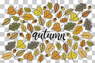Autumn Leaf Poster PNG