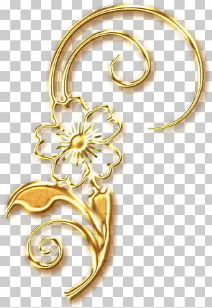 01504 Material Gold Body Jewellery PNG