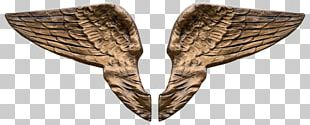 Angel Wing 3D Computer Graphics PNG