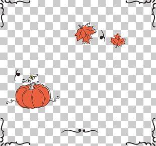 Calabaza Pumpkin Autumn PNG