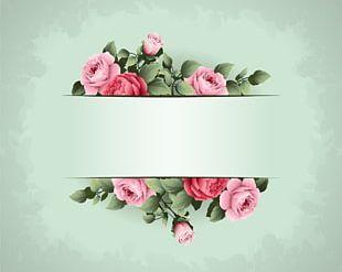 Flower Frame Idea PNG